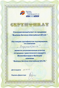 2010 bsi