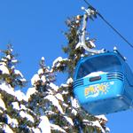 Вебинар Видерштраль и Алматур о горнолыжных курортах Болгарии