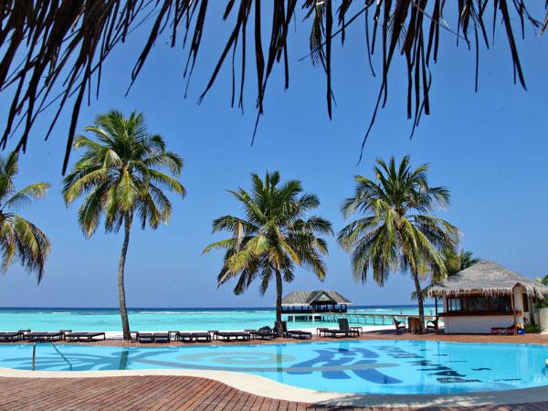 Palm Beach Resort & Spa Maldives бассейн