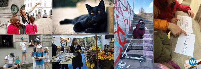 Экскурсия-квест для детей Приключение черной кошки 700х242