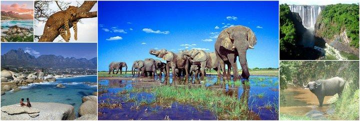 Экскурсионный тур ЮАР Великое африканское путешествие