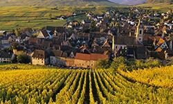 Шварцвальд-и-Эльзас-из-Баден-Бадена